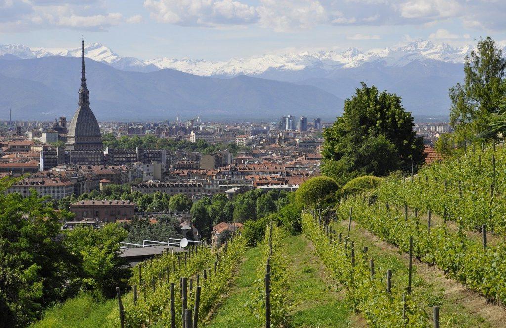 Vinos de Piamonte, Italia